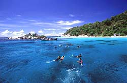 Liveaboard Phuket scuba diving and Similan with Dive Asia