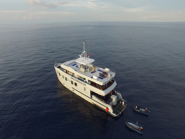 Diverace - Similan Islands Liveaboard