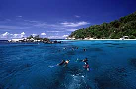 Phuket scuba diving Day trip thailand diving vacation tour Phi Phi Island and Similan