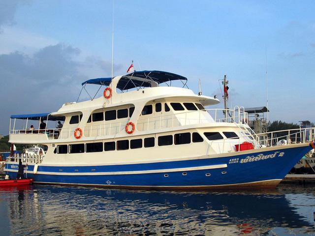 Andaman Tritan seitenansicht von Links